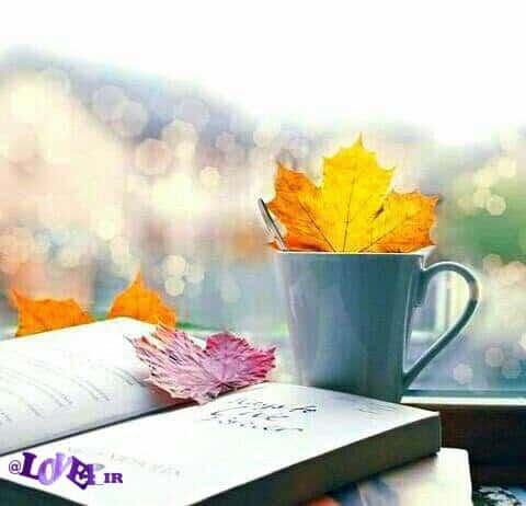 جملات عاشقانه, دل نوشته, مطالب خواندنی, متنهای عاشقانه, دل نوشته های زیبا, عاشقانه, متن عاشقانه