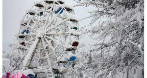 هربازی یخ زده بر اثر بارش شدید برف در رشت، باغ محتشم