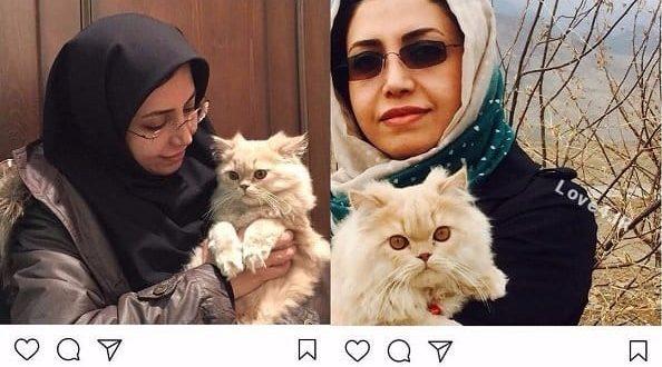 گربه الهام فخاری نماینده مردم شورای شهر تهران با حیوانات + عکس