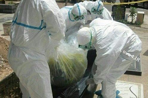 بیماری تب کریمه کنگو اخرین آمار کشته ها