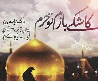 دلنوشته امام رضا (ع) |عکس نوشته امام رضا (ع)