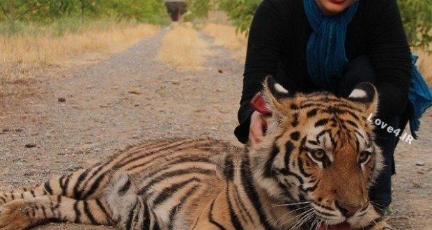 عکسهای نفیسه روشن همراه حیوانات وحشی